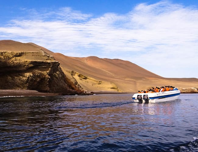 Ballestas Islands Boat Tour Peru