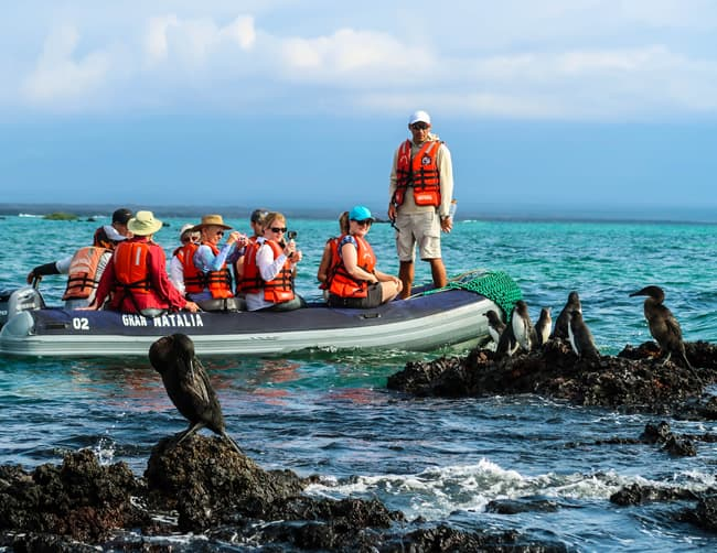 Family Friendly Galapagos Cruises Iletours