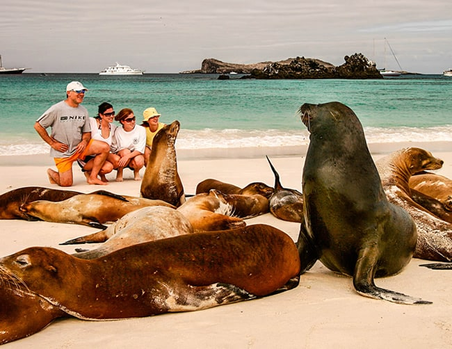 Galapagos Family Adventure Tours Iletours