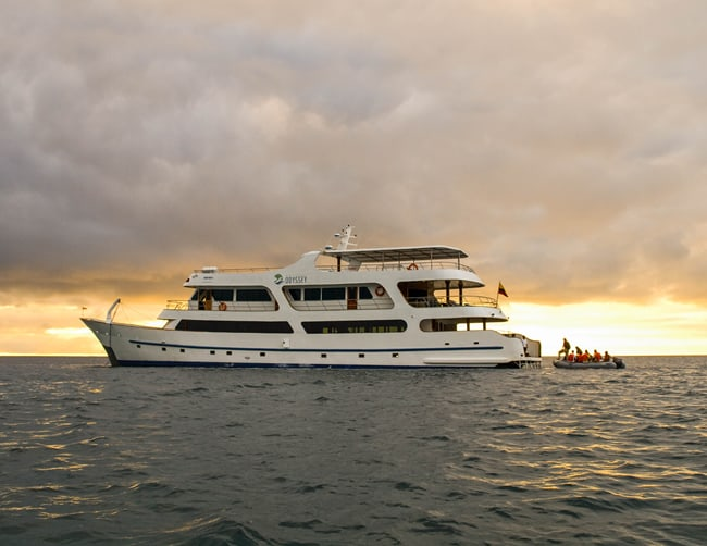 Galapagos Family Vacation Packages Iletours