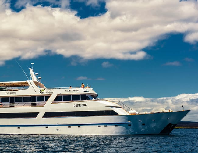 Galapagos Luxury Cruise Iletours