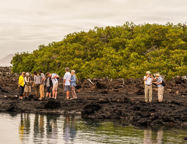 Luxury Yachts Galapagos Islands Iletours