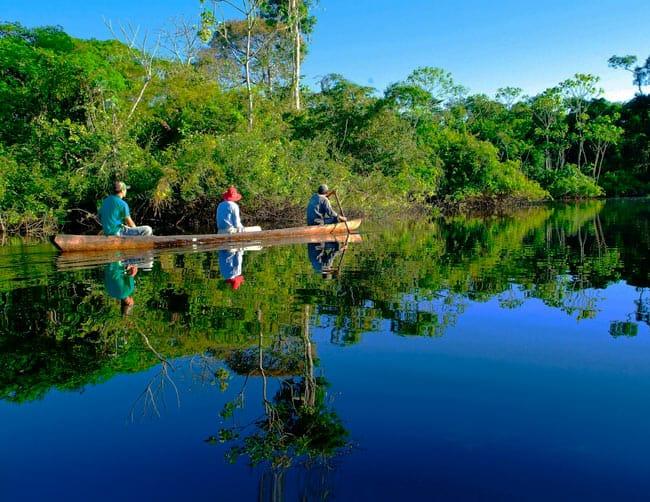 Rainforest & Amazon Tours