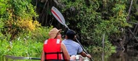 Pacaya Samiria Reserve Cruises Peru 08 Days