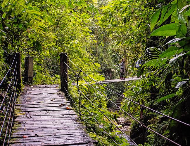 Mindo Ecological Reserve Iletours