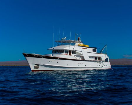 Last Minute, Cachalote Yacht, Galapagos Cruises