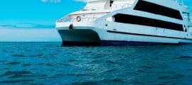 Last Minute First Class Yachts – Galapagos Cruises M/Y Coral I & II Yachts