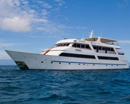 Last Minute Galapagos Cruises – Sea Star Journey
