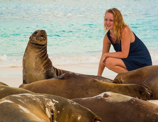 Galapagos Islands Diving Holidays Iletours