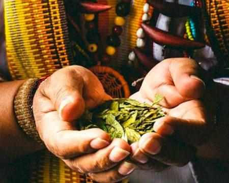 Tour Medicina Ancestral Andina 5 Días