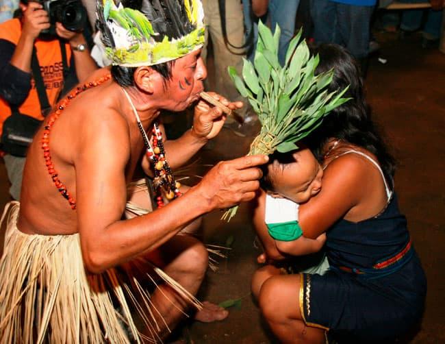 medicina ancestral amazonica