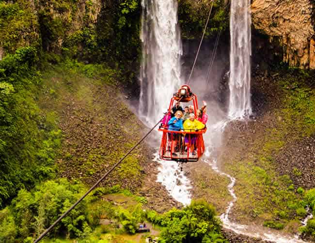 Rainforest Tours Ecuador Iletours