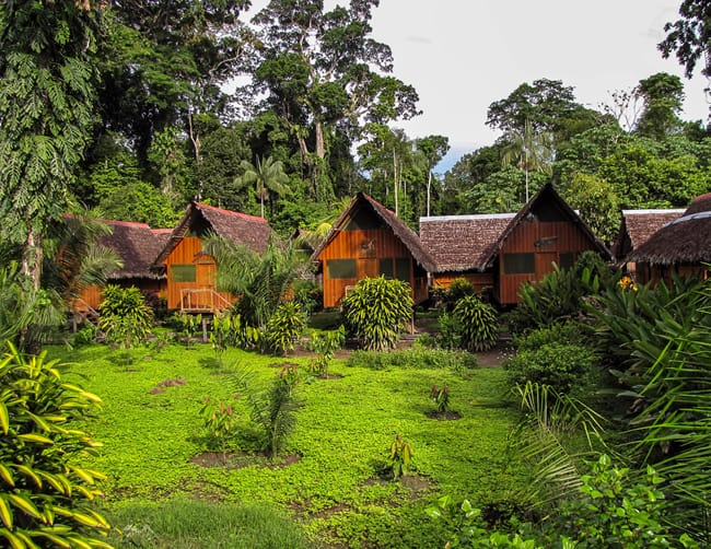 Tambo Jungle Lodge Lago Sandoval | ILE Tours