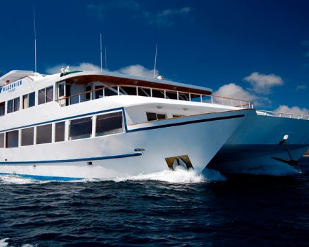 Last Minute Millennium Yacht First Class Galapagos Cruise