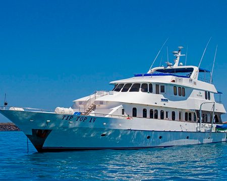 Last Minute Tip Top IV First Class Yacht  Galapagos