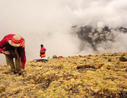 Visit  the Weaving Community of Huilloc Peru