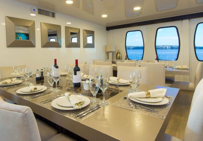 Alya Catamaran Galapagos Cruises Room