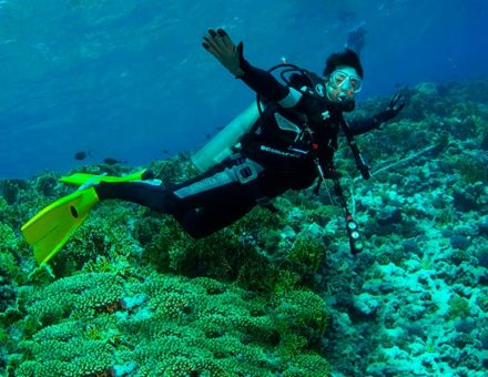 Best Places for Scuba Diving in Galapagos
