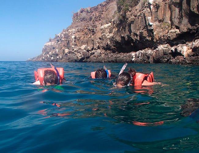 The Daphne Menor Daphne Island snorkeling